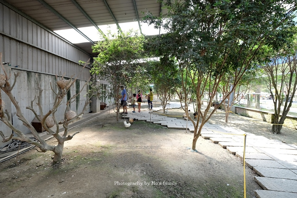 【嘉義親子景點】三隻小豬觀光農場49.JPG