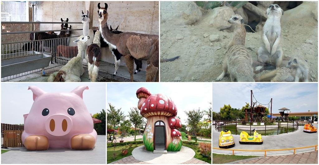 【嘉義親子景點】三隻小豬觀光農場fb.jpg