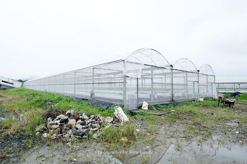 【宜蘭採草莓景點】本事農莊2.JPG