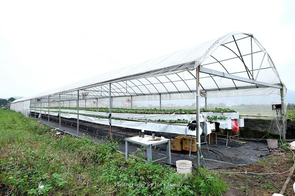 【宜蘭採草莓景點】本事農莊7.JPG