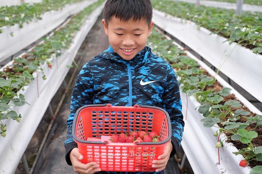 【宜蘭採草莓景點】本事農莊13.JPG