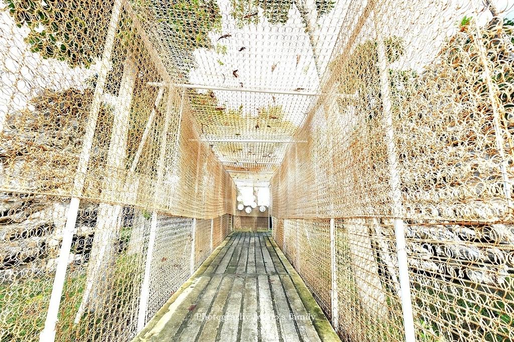 【宜蘭綺麗觀光園區】觀光工廠進化室內親子樂園!餵梅花鹿、卡丁車,宜蘭雨天景點5.JPG