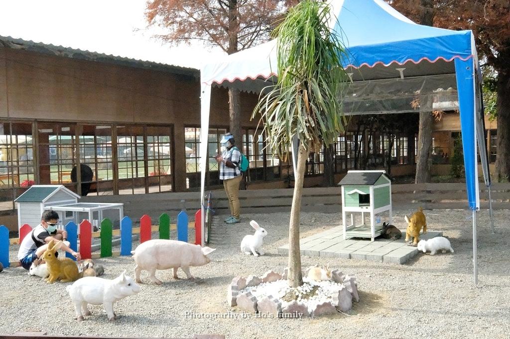【雲林親子景點】古坑鹿營親子農場~滑草、餵小動物、落羽松林、親子餐廳23.JPG