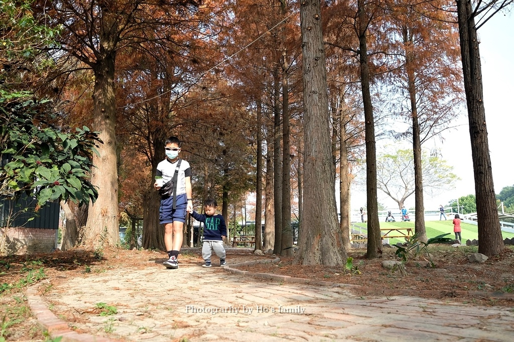 【雲林親子景點】古坑鹿營親子農場~滑草、餵小動物、落羽松林、親子餐廳29.JPG