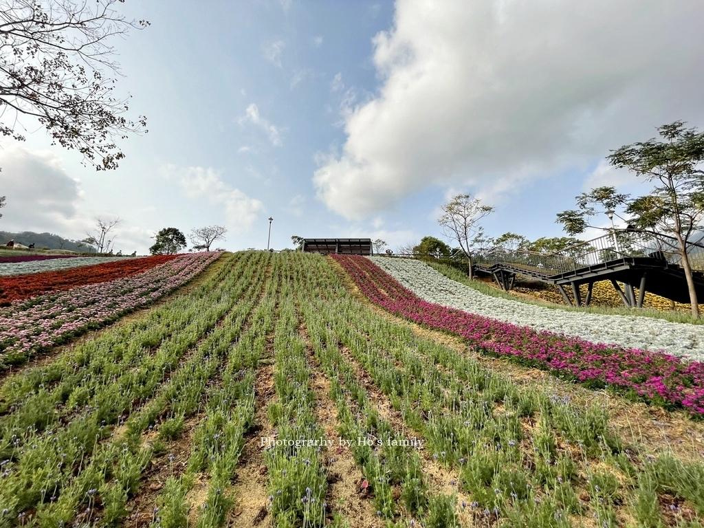 北投社三層崎公園2021花況、交通、ig拍照打卡景點24.JPG