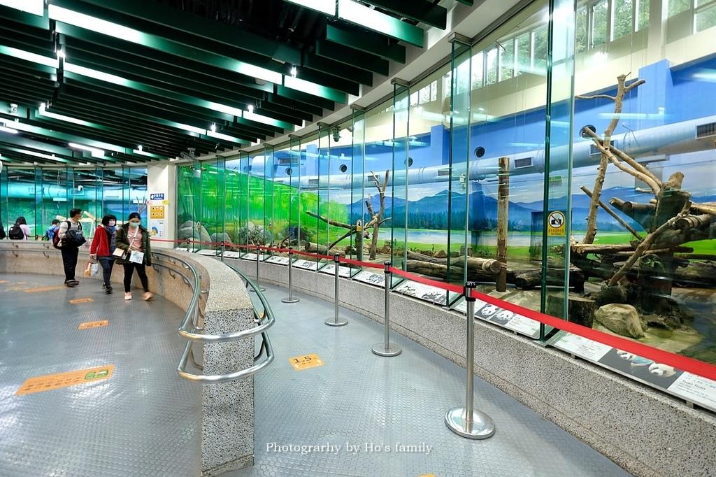 台北動物園貓纜二日遊交通住宿景點安排10.JPG