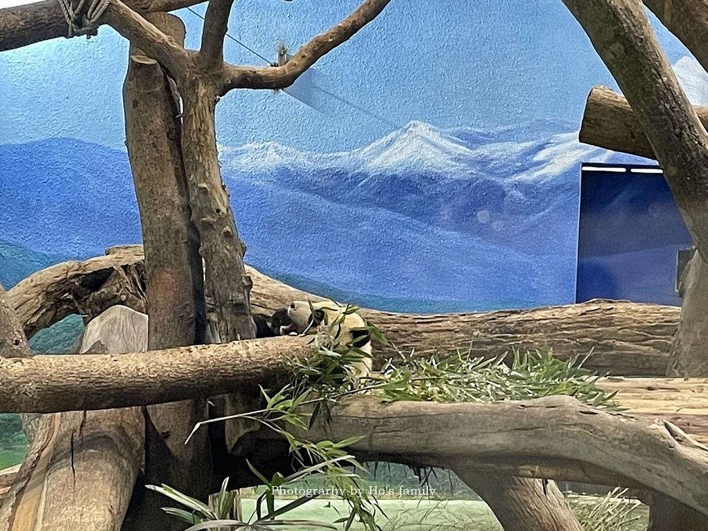 台北動物園貓纜二日遊交通住宿景點安排16.JPG