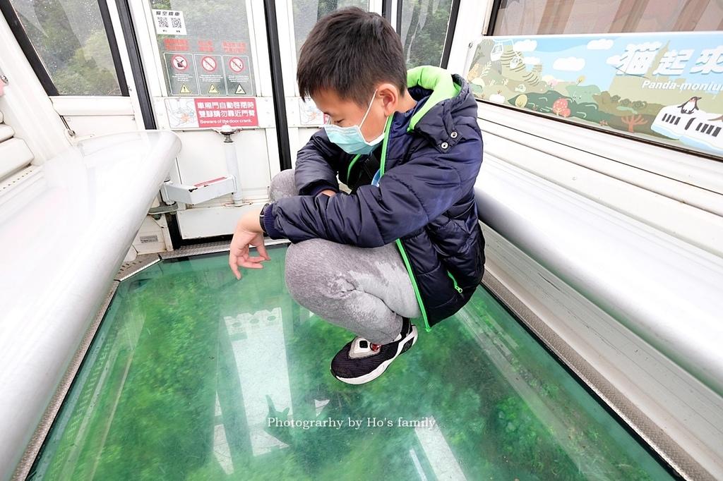 台北動物園貓纜二日遊交通住宿景點安排34.JPG