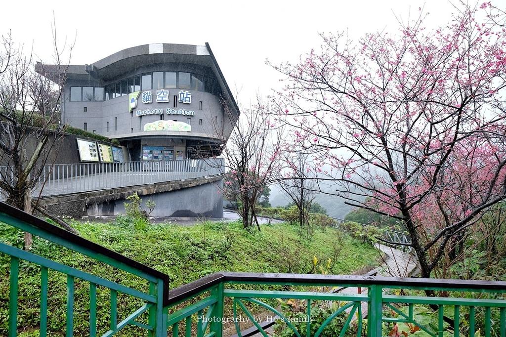 台北動物園貓纜二日遊交通住宿景點安排35.JPG