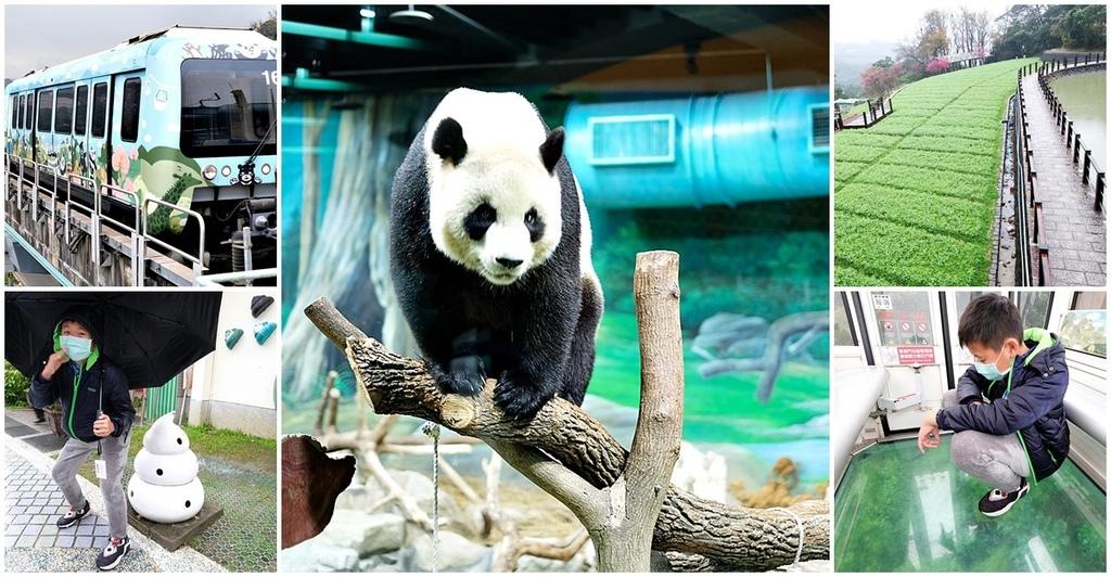 台北動物園貓纜二日遊交通住宿景點安排fb.jpg