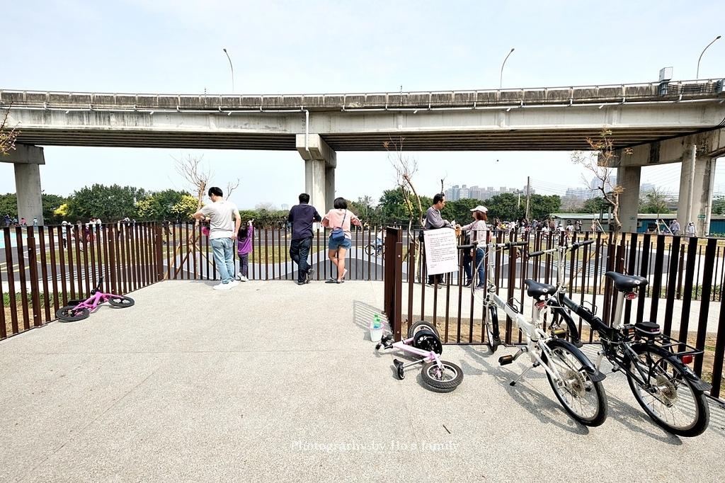 【新竹親子公園】頭前溪左岸Pushbike滑輪公園3.JPG