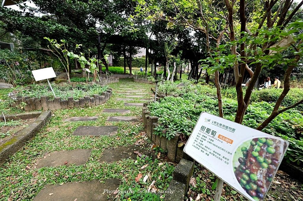 【台東親子景點】原生應用植物園4.JPG