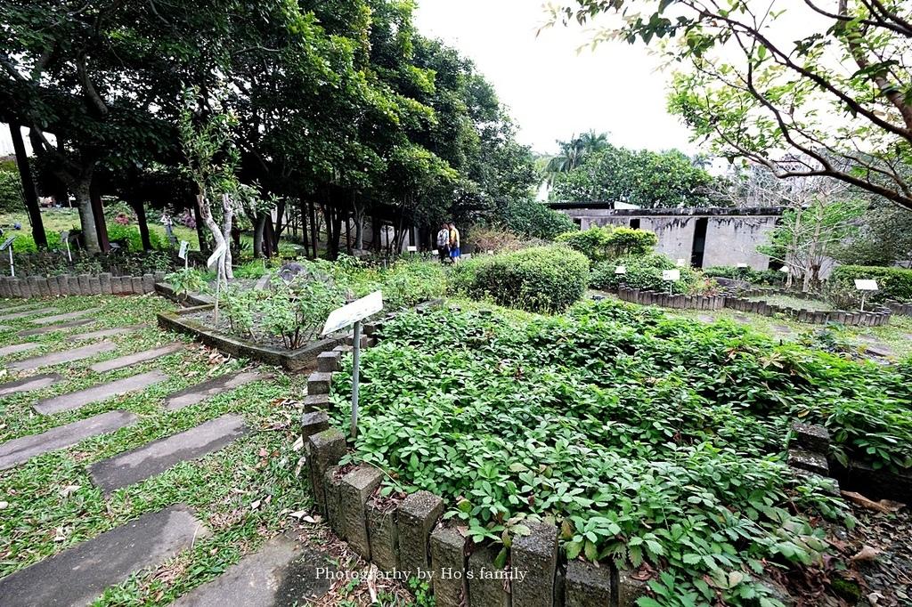【台東親子景點】原生應用植物園5.JPG