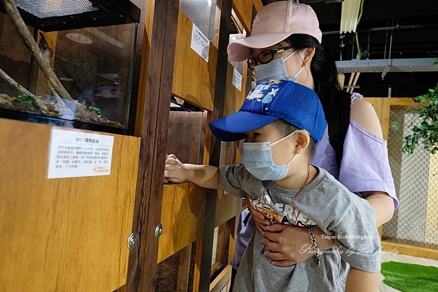 台北大昆蟲展|兒童新樂園室內親子展覽8.JPG