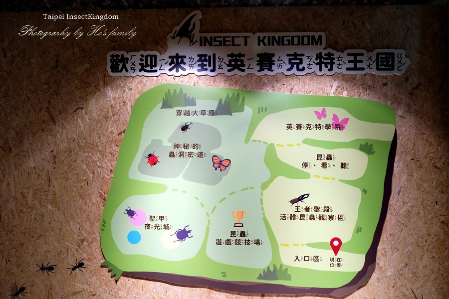 台北大昆蟲展|兒童新樂園室內親子展覽3.JPG