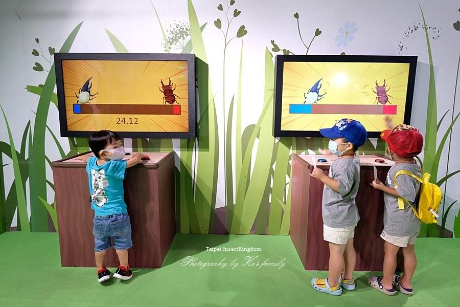 台北大昆蟲展|兒童新樂園室內親子展覽16.JPG