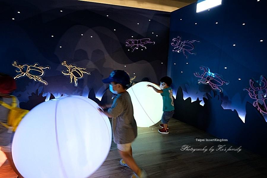 台北大昆蟲展|兒童新樂園室內親子展覽20.JPG