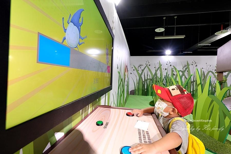 台北大昆蟲展|兒童新樂園室內親子展覽19.JPG