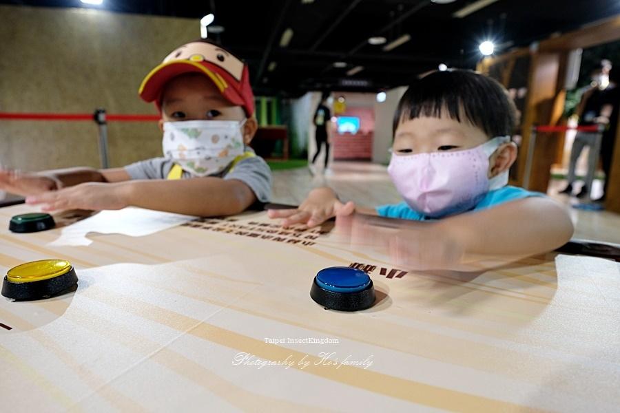 台北大昆蟲展|兒童新樂園室內親子展覽15.JPG
