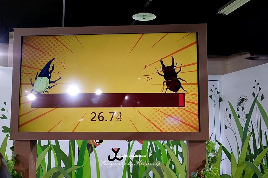 台北大昆蟲展|兒童新樂園室內親子展覽14.JPG