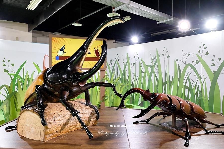台北大昆蟲展|兒童新樂園室內親子展覽13.JPG