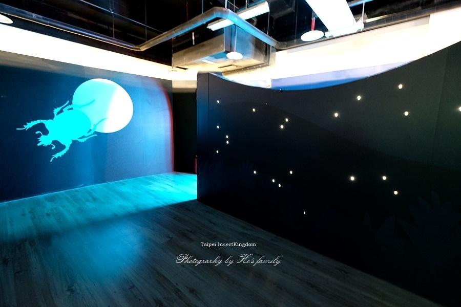 台北大昆蟲展|兒童新樂園室內親子展覽24.JPG