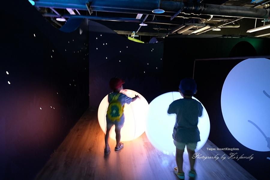 台北大昆蟲展|兒童新樂園室內親子展覽23.JPG