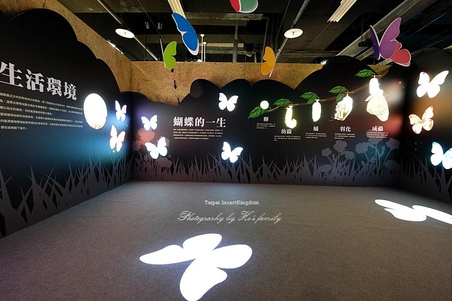 台北大昆蟲展|兒童新樂園室內親子展覽27.JPG