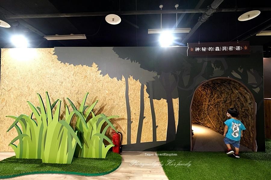 台北大昆蟲展|兒童新樂園室內親子展覽25.JPG