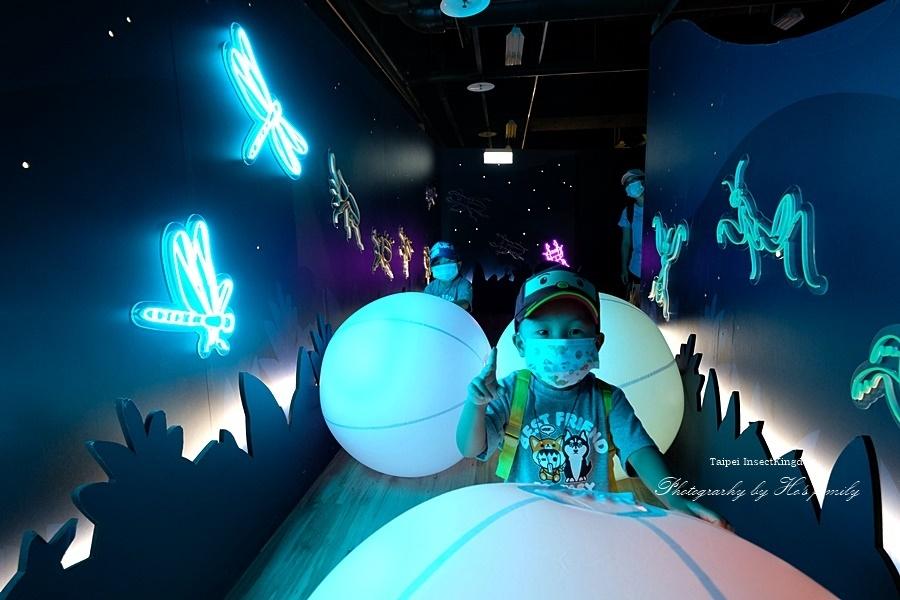 台北大昆蟲展|兒童新樂園室內親子展覽21.JPG