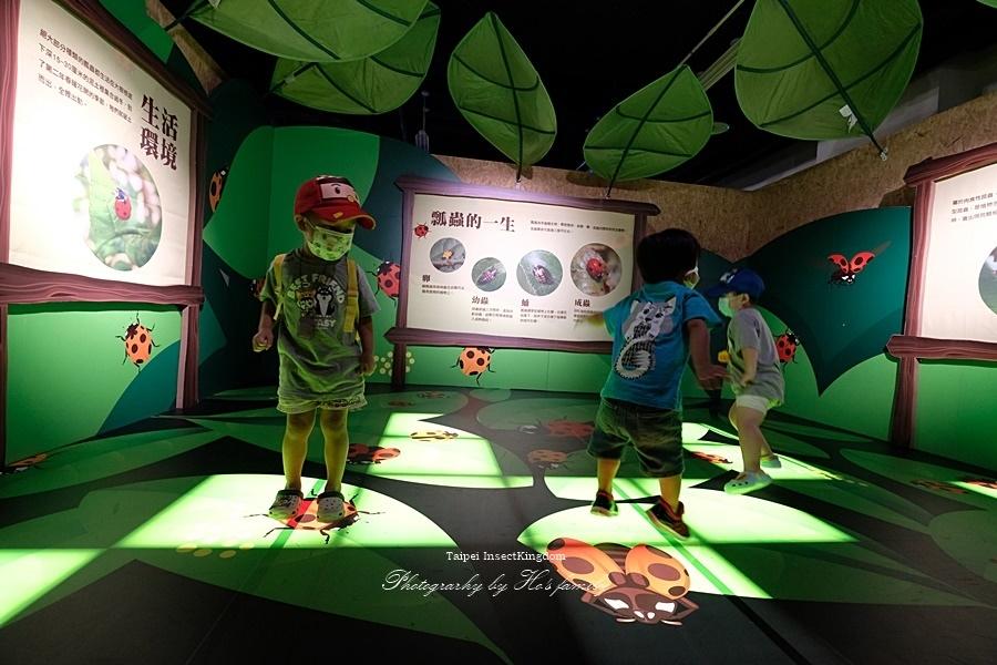 台北大昆蟲展|兒童新樂園室內親子展覽35.JPG