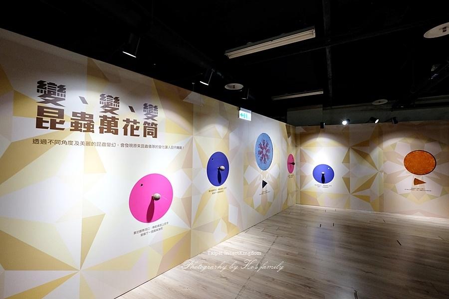 台北大昆蟲展|兒童新樂園室內親子展覽42.JPG