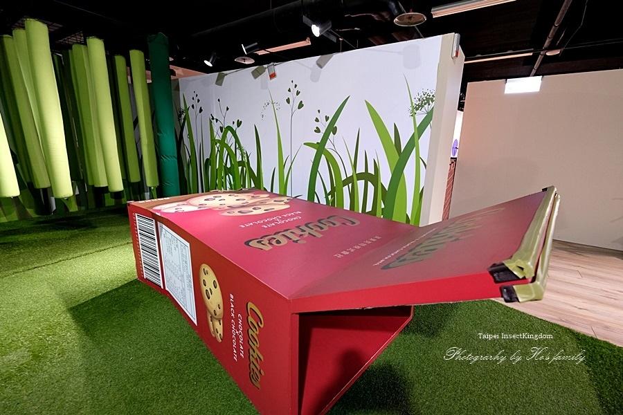 台北大昆蟲展|兒童新樂園室內親子展覽38.JPG