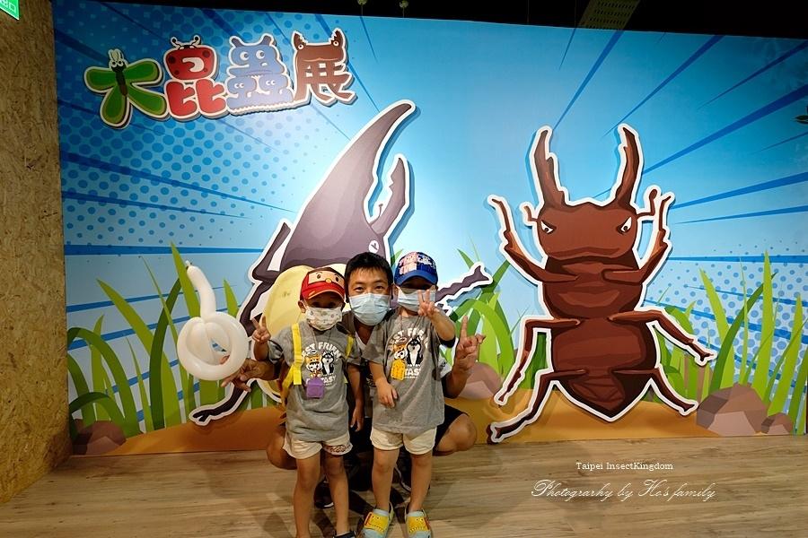 台北大昆蟲展|兒童新樂園室內親子展覽52.JPG