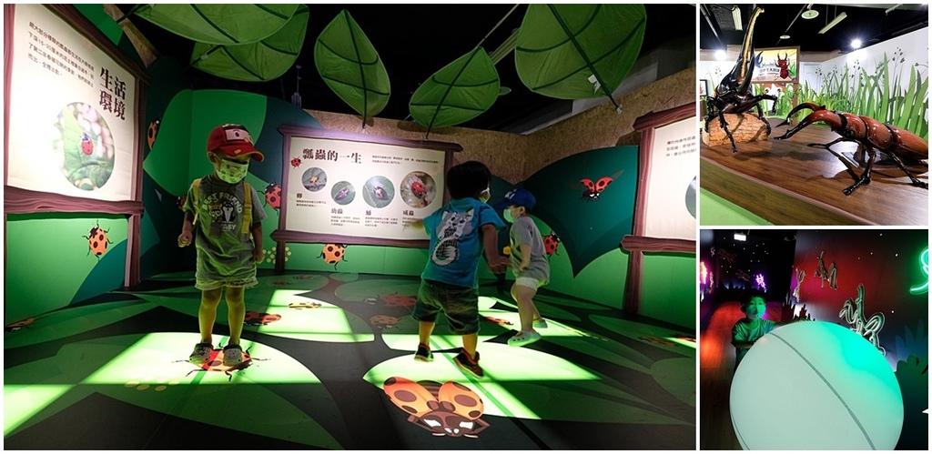 台北大昆蟲展|兒童新樂園室內親子展覽fb.jpg