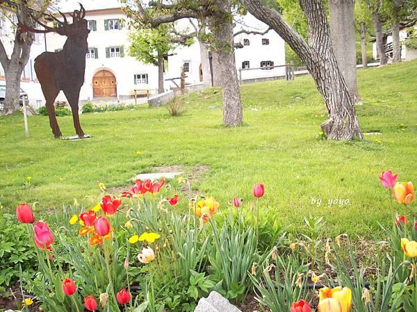 瑞士 142民宿庭園.jpg