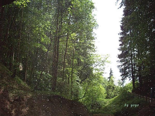 從洞口向外拍的美麗景色 268.jpg