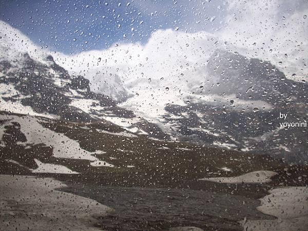 雨中很特別雪景 446-1.jpg