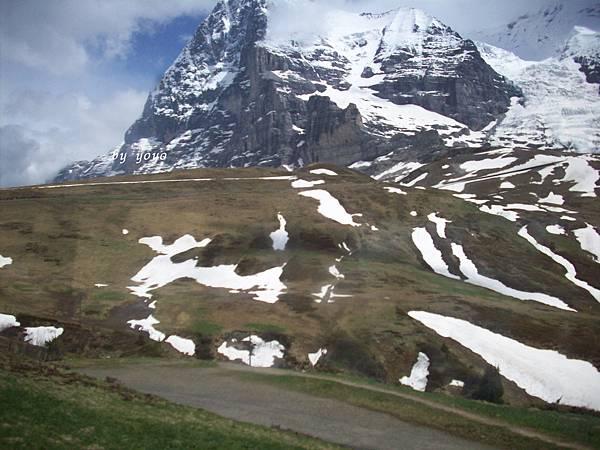 綠地雪景 452.jpg