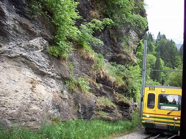 瑞士往勞特布勞嫩火車 462.jpg