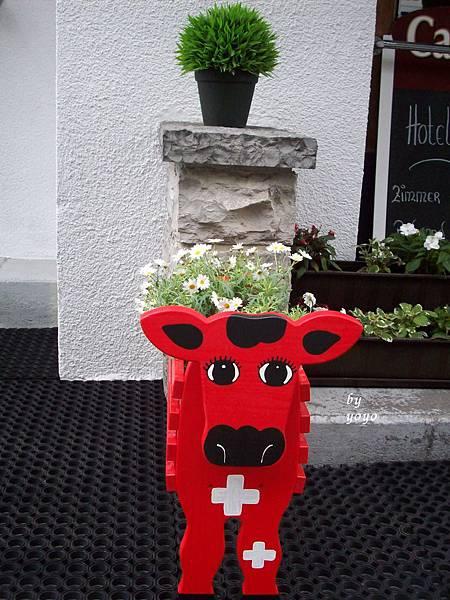 瑞士可愛的牛裝飾 475.jpg