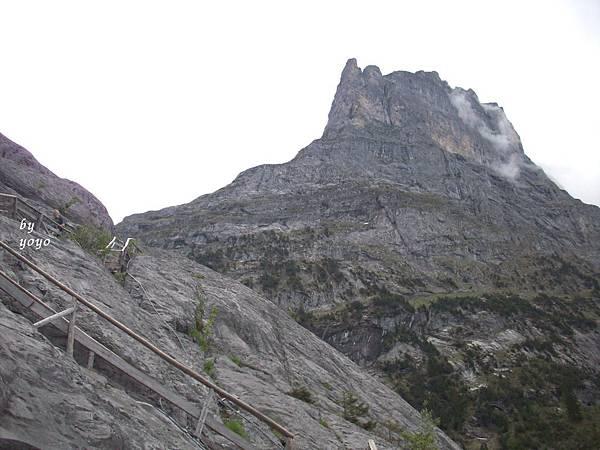 登木階梯之地理景觀 533.jpg