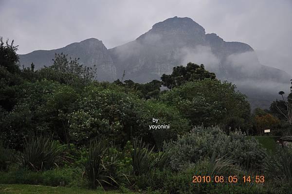 南非植物園DSC_0264-1.JPG