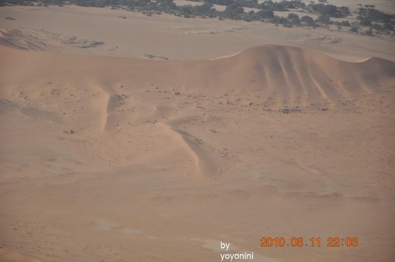 DSC_0487沙紋很美.JPG