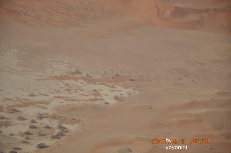 DSC_0761沙漠如海.JPG
