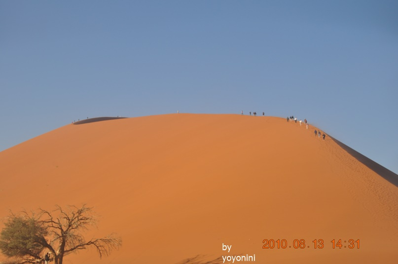 DSC_0471拍走上45沙丘.JPG