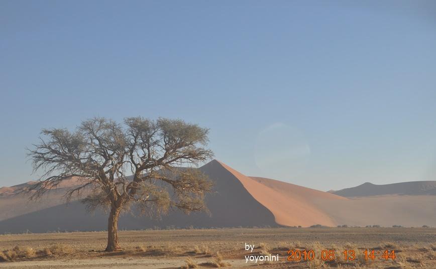 DSC_0518索蘇維雷紅沙漠.JPG