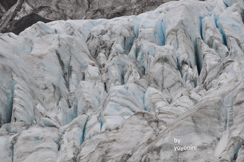DSC_0937冰河年代久遠.JPG
