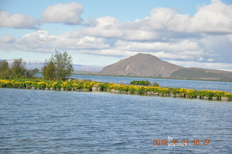 DSC_0825米湖.JPG
