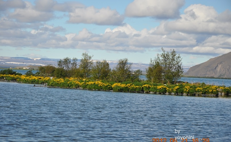 DSC_0830米湖湖水不深.JPG